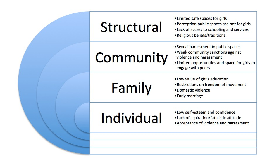 Parivartan ecological model