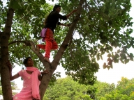 Climbing a tree to collect materials for their model school
